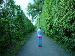 path-111201_640