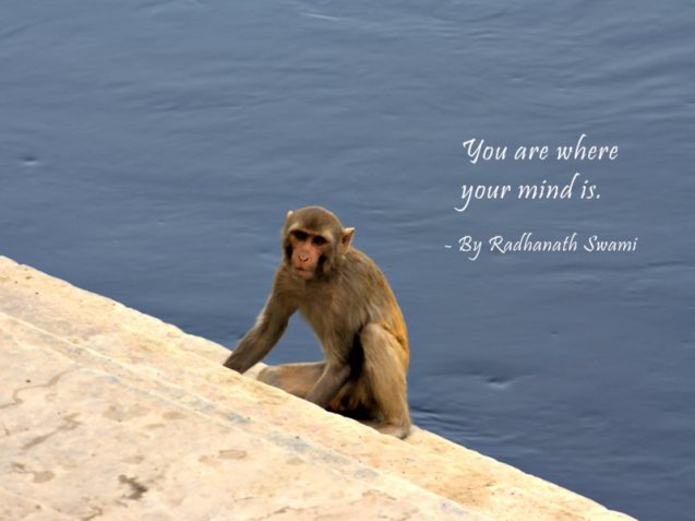 Quotes-by-Radhanath-Swami-on-Mind