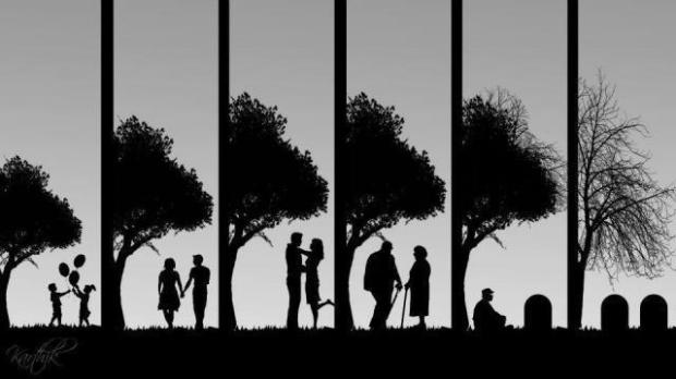 life-cycle-picture.jpg