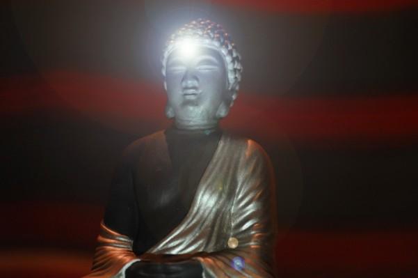 6952701-green-consciousness